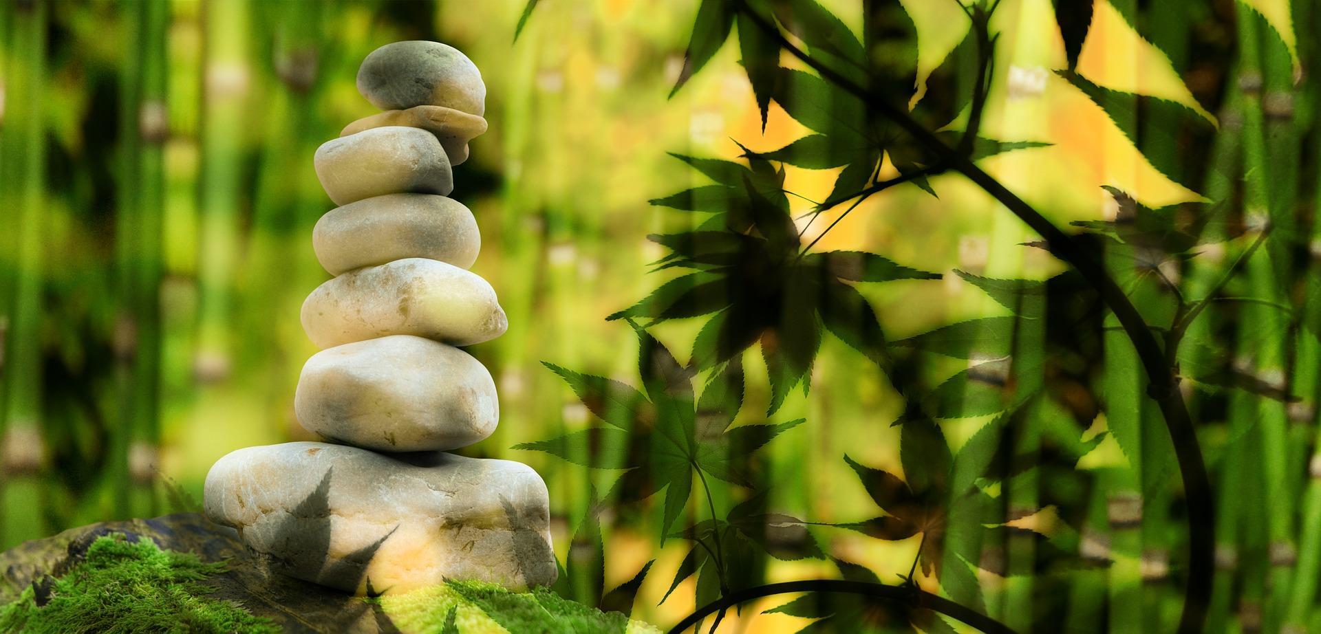 Einführung in die Selbstheilung und -verwirklichkung durch Meditation